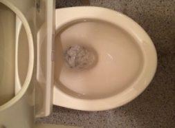 トイレのつまり除去のイメージ